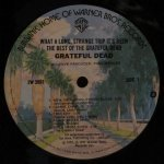 Grateful Dead - ‎What A Long Strange Trip It's Been: The Best Of The Grateful Dead